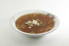 圆白菜汤 免版税库存照片