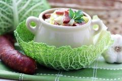 圆白菜汤 图库摄影