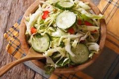 圆白菜沙拉用在碗水平的顶视图的黄瓜 免版税图库摄影