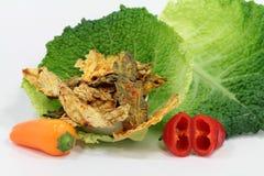 从圆白菜的菜芯片 免版税图库摄影