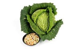 圆白菜绿色脉冲汤 免版税库存照片