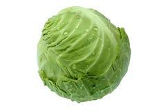 圆白菜绿色顶头年轻人 免版税库存照片
