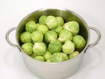 圆白菜绿色 免版税库存图片