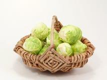 圆白菜绿色 免版税图库摄影