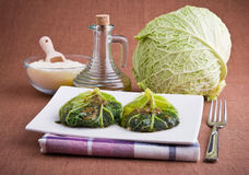 圆白菜肉卷开胃菜 库存照片