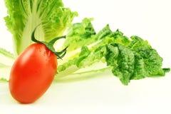 圆白菜蕃茄 免版税库存图片