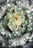 圆白菜装饰物 图库摄影