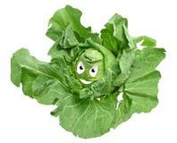 圆白菜面带笑容 免版税库存照片