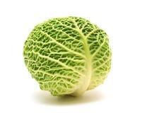 圆白菜顶头开胃菜 库存照片