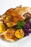 圆白菜鸭子烤红色 库存图片