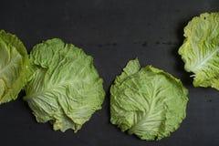 圆白菜离开背景 免版税库存图片