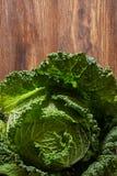 圆白菜绿色开胃菜 免版税库存图片