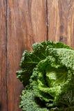 圆白菜绿色开胃菜 图库摄影