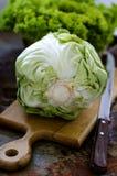 圆白菜头  库存图片