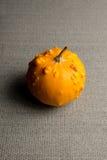 圆的七高八低的黄色金瓜或南瓜 图库摄影