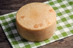 圆的乳酪pecorino 免版税库存照片