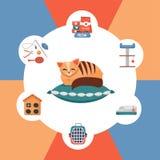 圆的五颜六色的infographics宠物照管辅助部件 设置似猫的后裔和宠物店的元素 与玩具的家养的小猫 库存例证