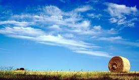 圆的大包干草麦子卷有云彩和天空蔚蓝背景 免版税库存照片