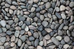 圆的小卵石石头背景与干燥叶子的 免版税库存图片