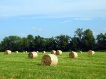 圆的干草捆在国家领域的打包机 图库摄影