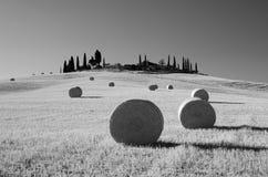 圆的干草捆,托斯卡纳,意大利 B&W 库存照片