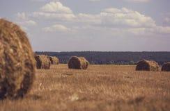 圆的捆在一个领域的麦子秸杆在反对蓝天的一个晴天 免版税图库摄影