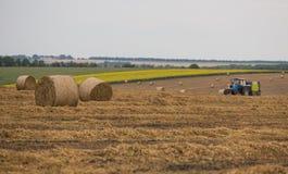 圆的捆秸杆 收获在麦田的秋天 免版税库存图片