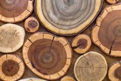 圆的木没有漆的固体自然生态软的色的褐色和黄色有裂痕的树桩背景,树削减了部分与 免版税库存图片