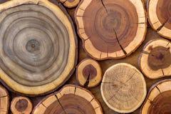 圆的木没有漆的固体自然生态软的色的褐色和黄色有裂痕的树桩背景,树削减了部分与 免版税库存照片