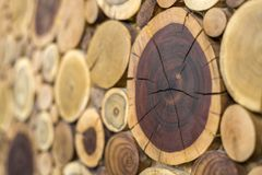 圆的木没有漆的固体自然生态软的色的褐色和黄色有裂痕的树桩背景,树透视图  库存图片