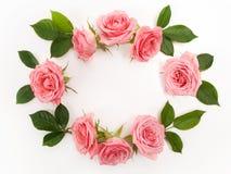 圆的框架由桃红色玫瑰,绿色叶子,分支,在白色背景的花卉样式做成 平的位置,顶视图 库存照片