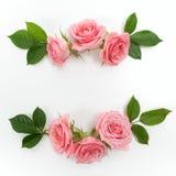 圆的框架由桃红色玫瑰,绿色叶子,分支,在白色背景的花卉样式做成 平的位置,顶视图 免版税库存照片