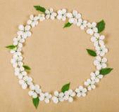 圆的框架花圈由白色春天花和绿色叶子制成在包装纸背景 r 免版税库存图片