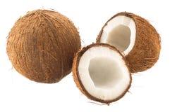 圆的椰子和破裂的椰子果子 免版税图库摄影