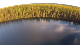 圆的湖和森林鸟瞰图  股票视频