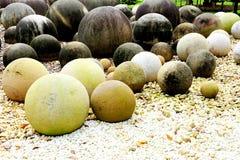 圆的石头 库存图片