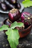 圆的紫色茄子 图库摄影