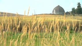 圆的谷仓, Palouse,华盛顿4K UHD 股票视频