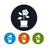 圆的象花盆的四种类型 免版税图库摄影
