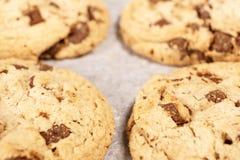 圆的软性烘烤巧克力曲奇饼 库存图片