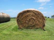圆的滚动的干草捆 库存图片