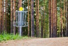 圆盘高尔夫球孔 免版税库存照片