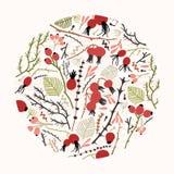 圆花卉装饰或自然装饰设计元素包括了树枝、枝杈、叶子和莓果或者 皇族释放例证