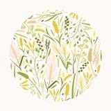 圆装饰设计元素或植物的装饰包括了美好的狂放的草甸草本和耳朵或者钉 免版税库存照片