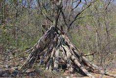 圆锥形帐蓬在森林 库存图片