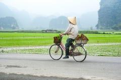 圆锥形帽子的越南妇女在自行车 binh ninh越南 免版税库存图片