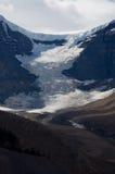 圆顶冰川 库存照片