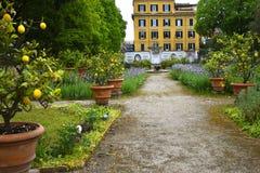 圆顶场所的Borghese罗马意大利庭院 免版税库存图片