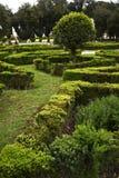 圆顶场所的Borghese罗马Ital庭院 免版税库存图片