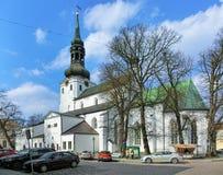 圆顶教会在塔林,爱沙尼亚 库存图片